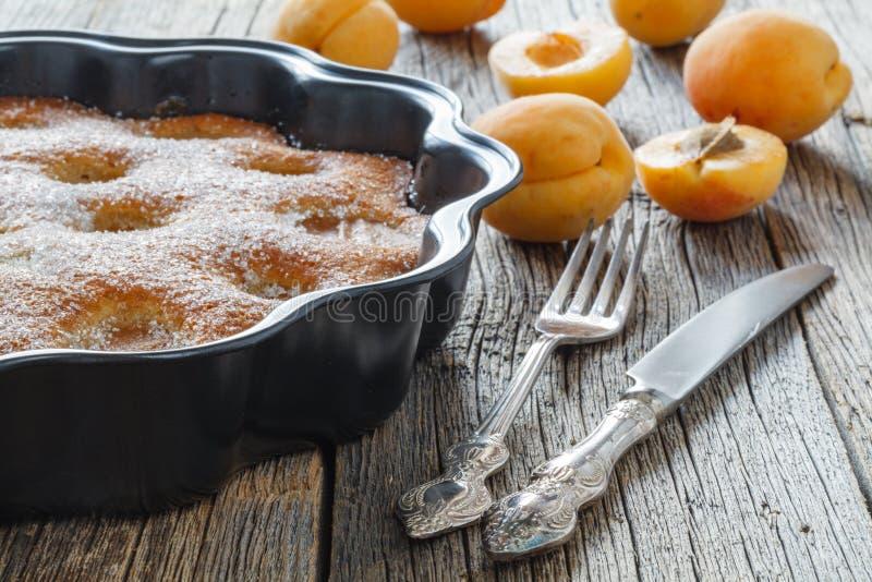Torta de miel con los albaricoques, empanada del albaricoque imágenes de archivo libres de regalías