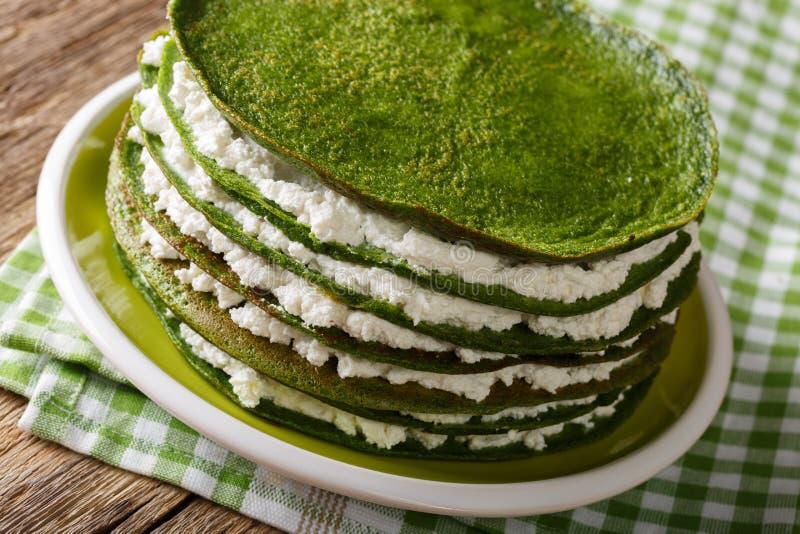 Torta del bocado hecha de crespones de la espinaca con el primer del requesón foto de archivo libre de regalías