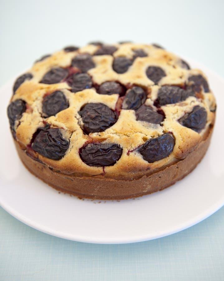 Torta Della Prugna Di Contry Fotografie Stock