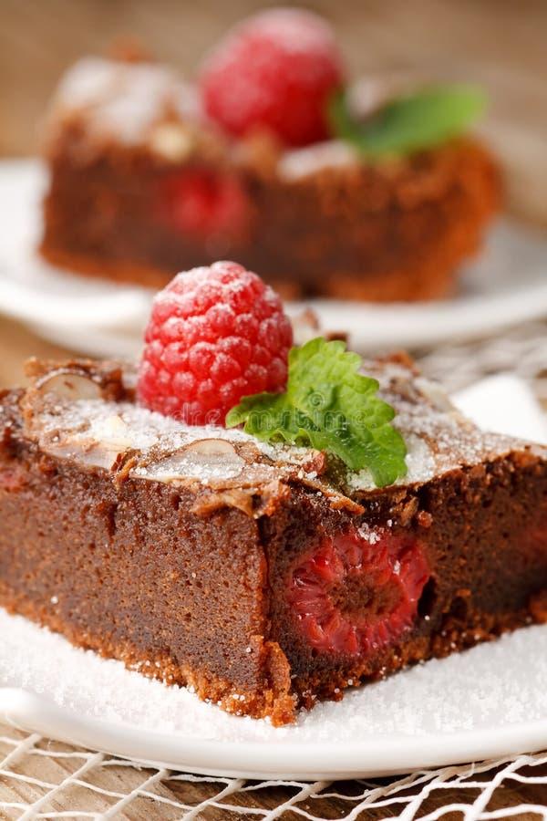 Torta di cioccolato con il lampone immagine stock