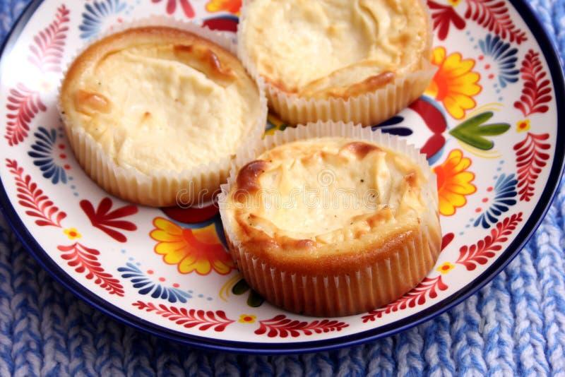 Torta di formaggio del quark fotografie stock