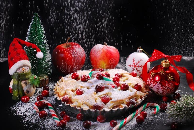 Torta di mele con il mirtillo rosso per natale nel paesaggio di inverno immagine stock libera da diritti