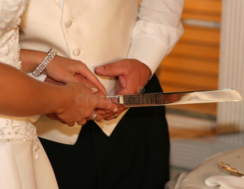 Torta di taglio dello sposo e della sposa fotografia stock libera da diritti