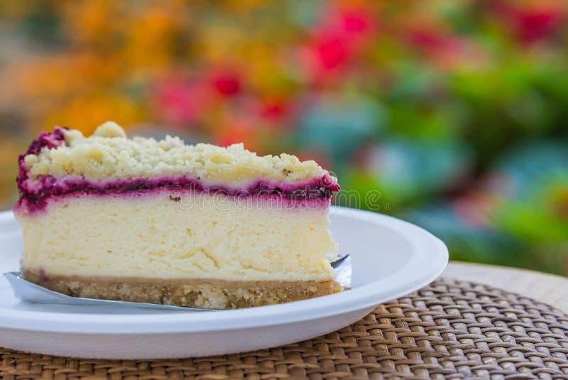 Torta do bolo de queijo do mirtilo imagem de stock