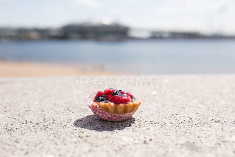 Torta en la costa foto de archivo libre de regalías