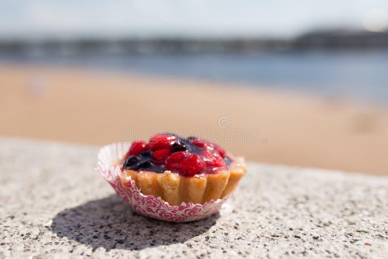 Torta en la costa imagen de archivo libre de regalías