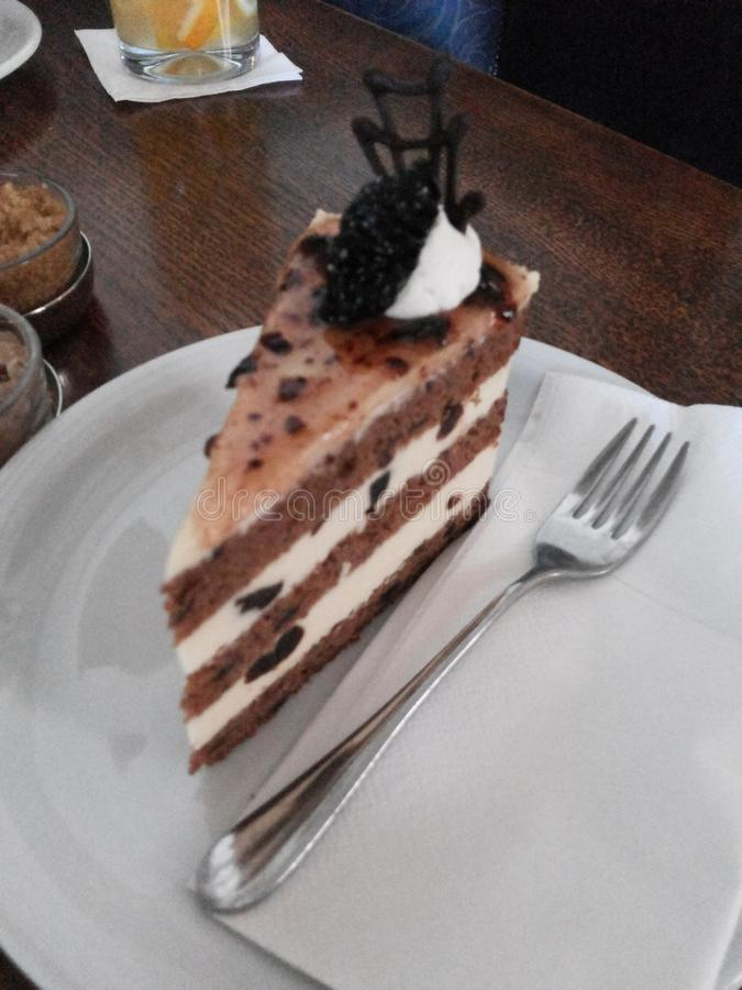 Torta húngara imagen de archivo