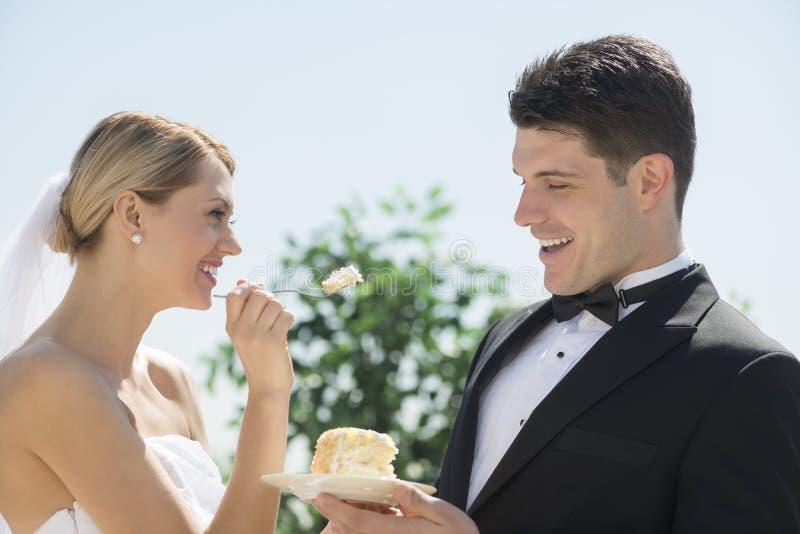 Torta nunziale d'alimentazione della sposa allo sposo immagine stock