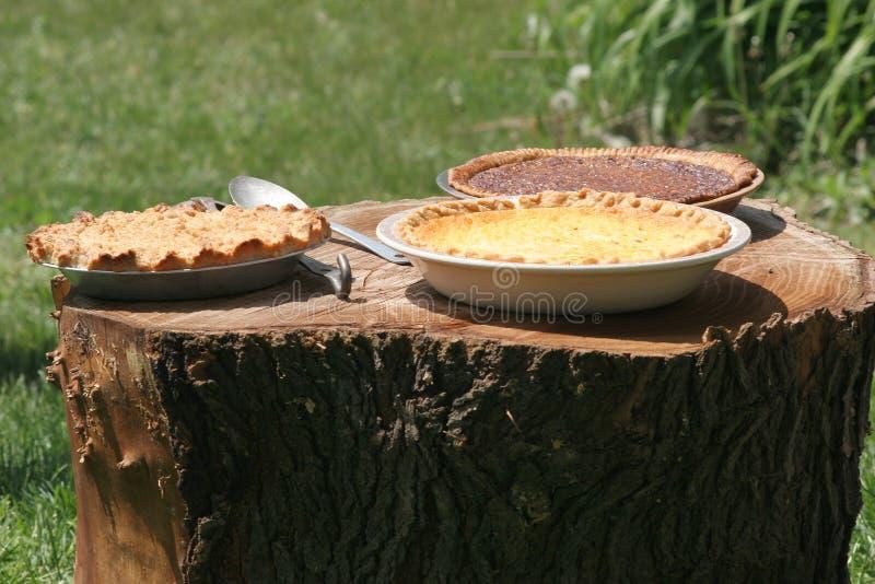Tortas que refrigeram no coto da árvore imagens de stock royalty free