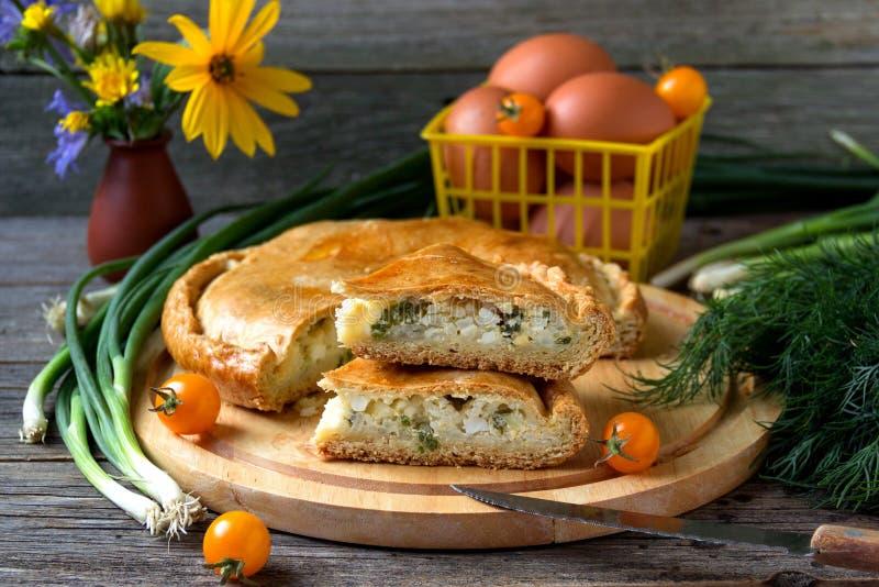 Torte mit Fleisch und Zwiebeln lizenzfreie stockfotos
