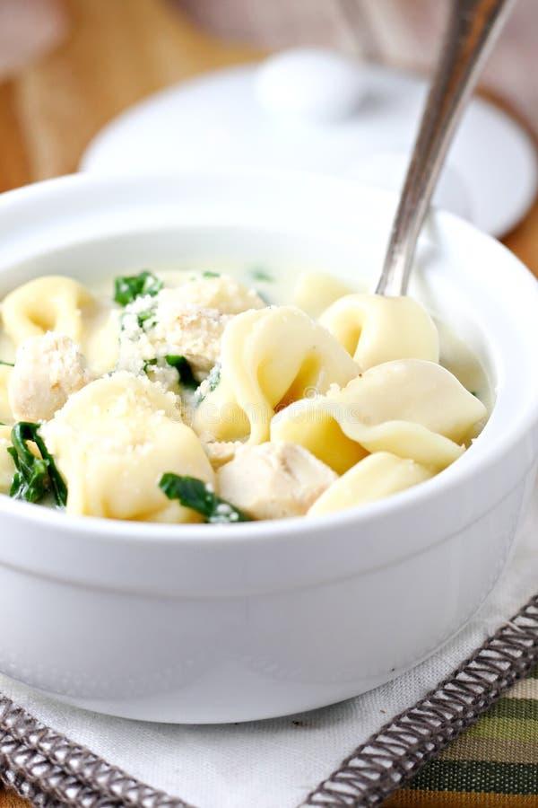 Tortellini Alfredo Soup With Chicken immagini stock