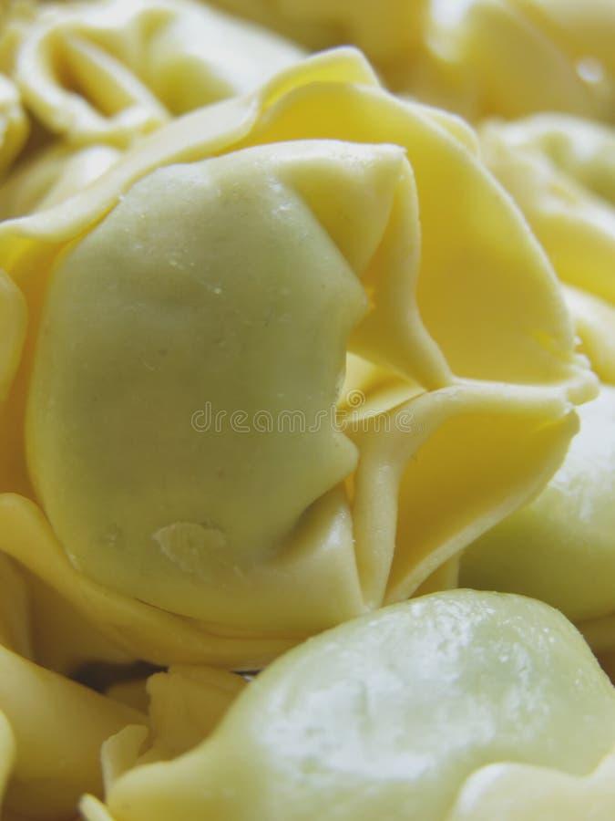 Tortellini italiano della pasta immagine stock libera da diritti