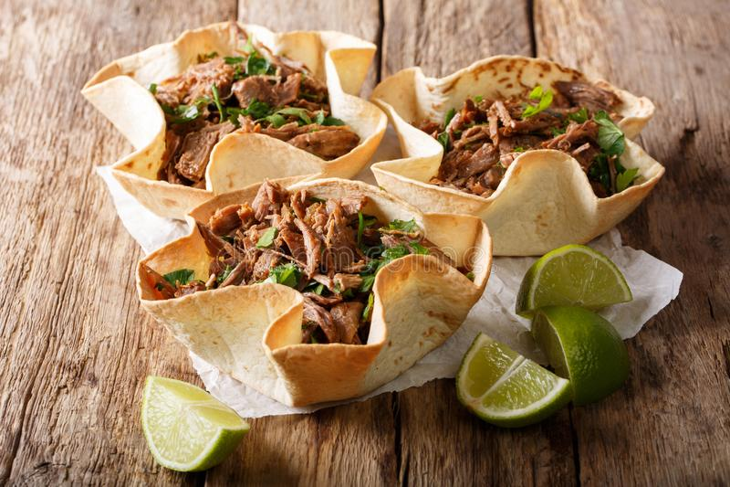 Tortilha mexicana picante com close-up puxado da carne horizontal imagens de stock royalty free