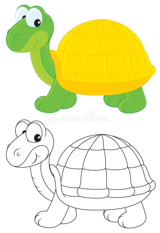 Download Tortoise Royalty Free Stock Image - Image: 27051816