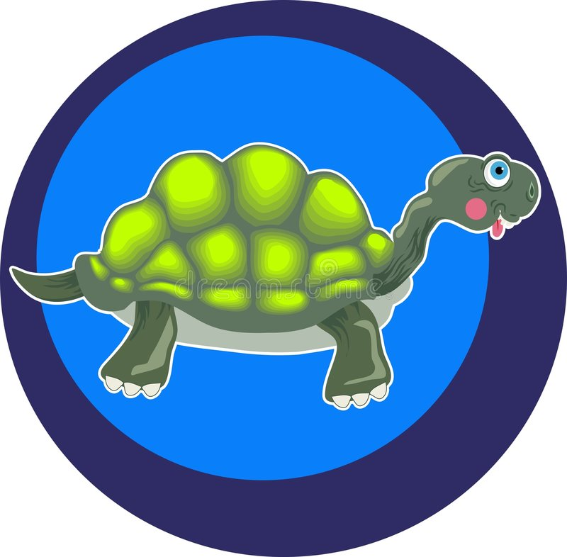 Tortoise royalty free illustration
