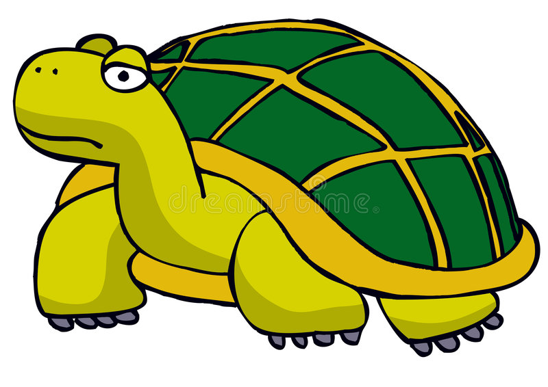 Download Tortoise stock illustration. Image of shell, green, lazy - 709945