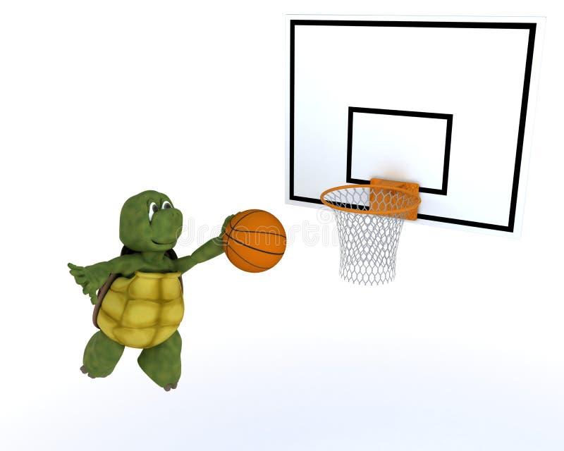 Tortoise playing basket ball royalty free illustration