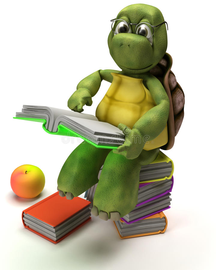 Tortoise reading a book stock illustration