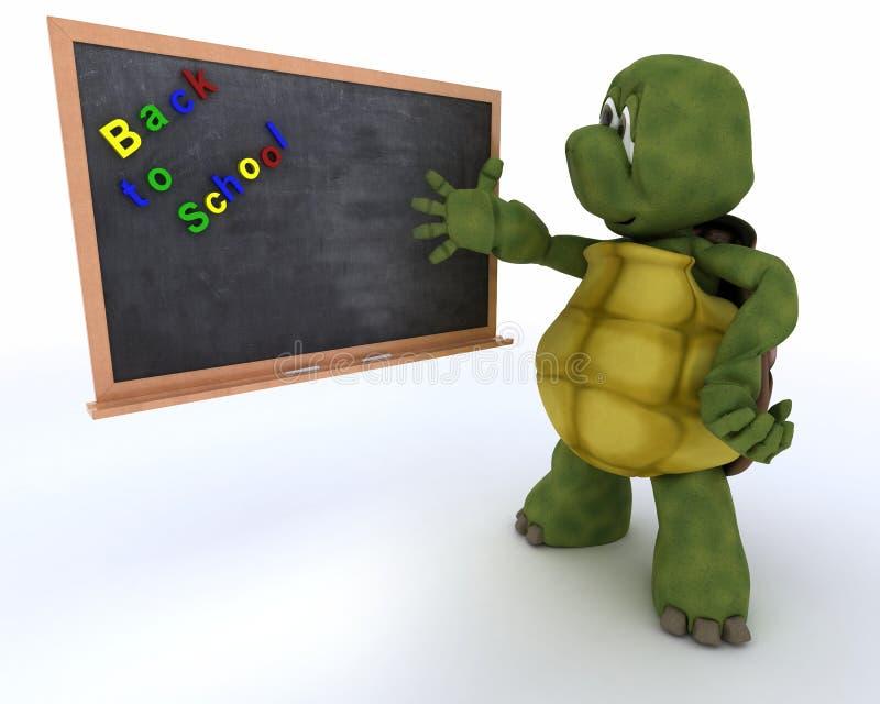 Tortoise with school chalk board stock illustration