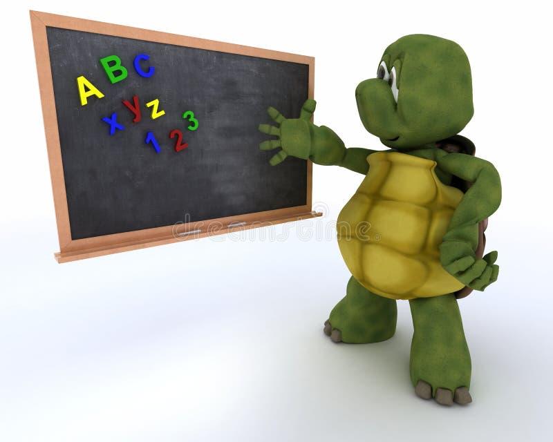 Download Tortoise With School Chalk Board Stock Illustration - Image: 26614159