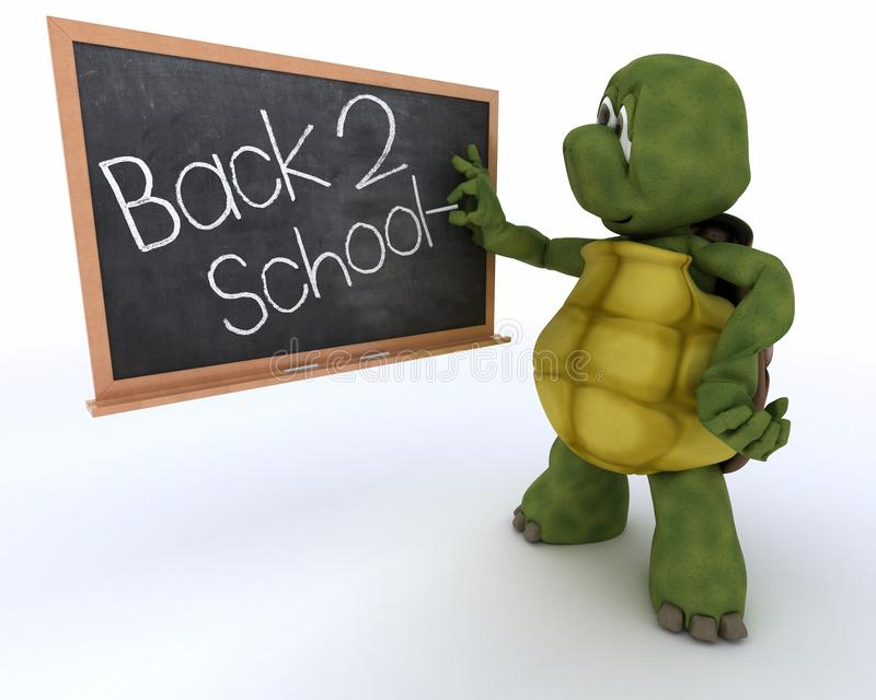 Tortoise with school chalk board back to school stock illustration