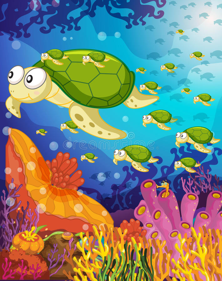 Tortoise in water royalty free illustration