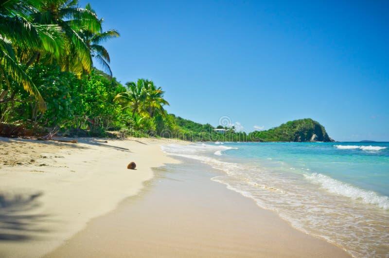 Tortola, Îles Vierges britanniques photos libres de droits