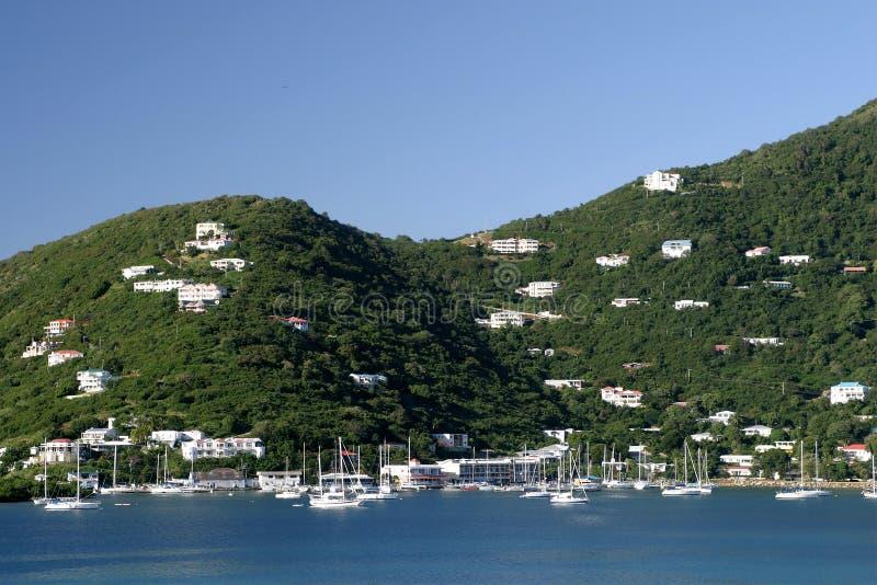 Tortola lizenzfreies stockfoto
