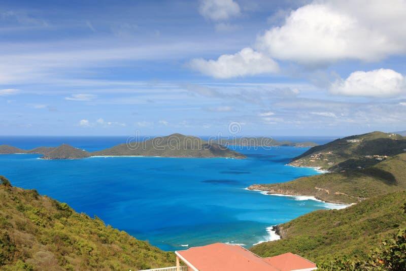 Tortola fotos de stock