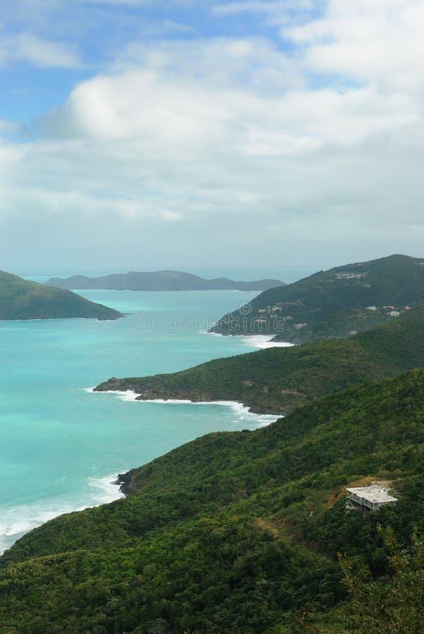 Tortola fotografía de archivo