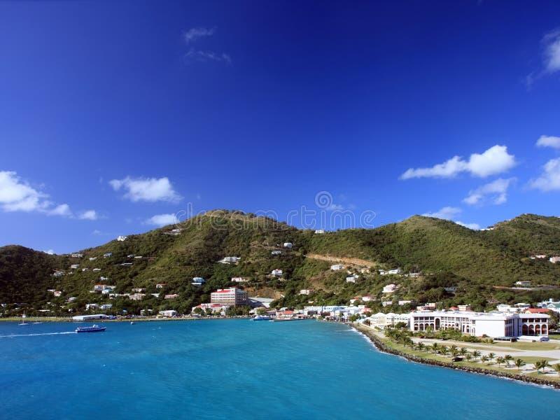 Tortola imagem de stock royalty free