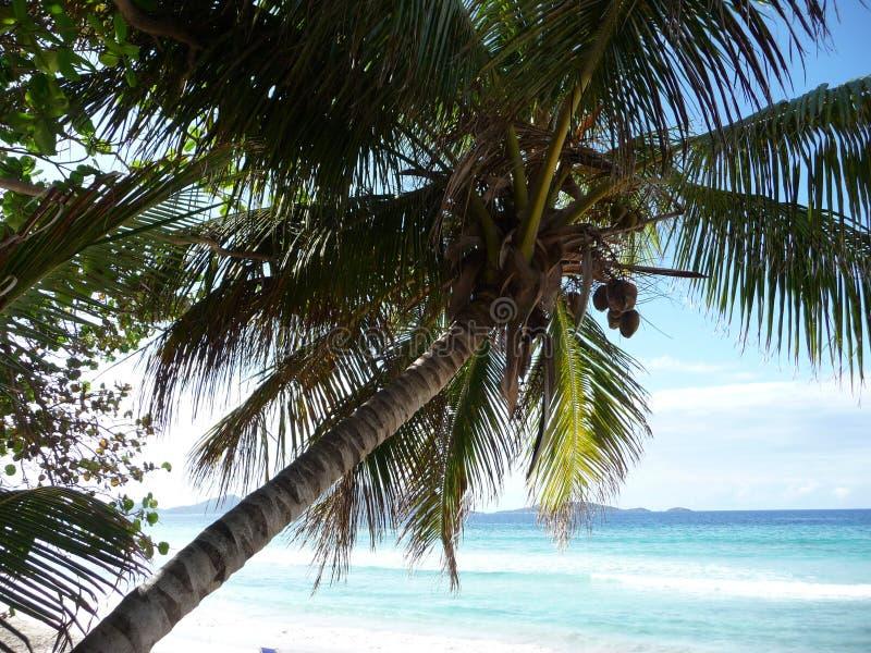 Tortola - British Virgin Islands foto de archivo libre de regalías