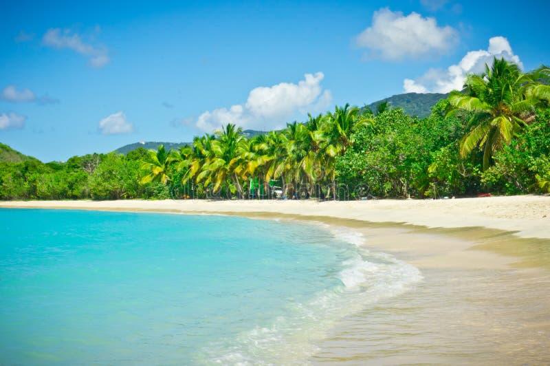 Tortola, Brytyjskie Dziewicze wyspy zdjęcia royalty free