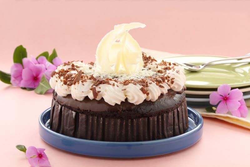 tortowy czekoladowy błoto obrazy stock