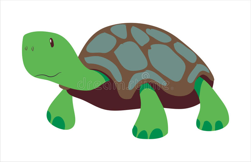 Tortue illustration libre de droits