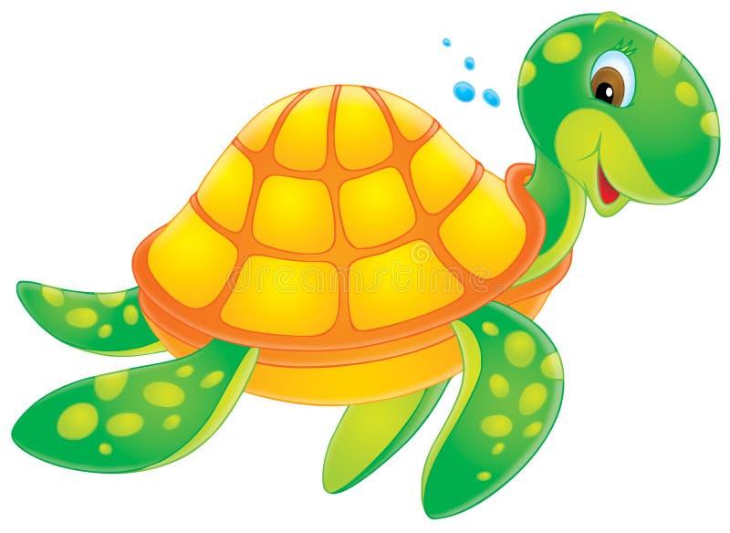 tortue illustration de vecteur