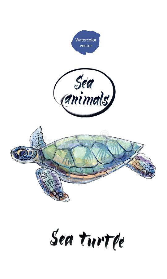 Tortue de mer, aquarelle tirée par la main, illustration de vecteur illustration de vecteur