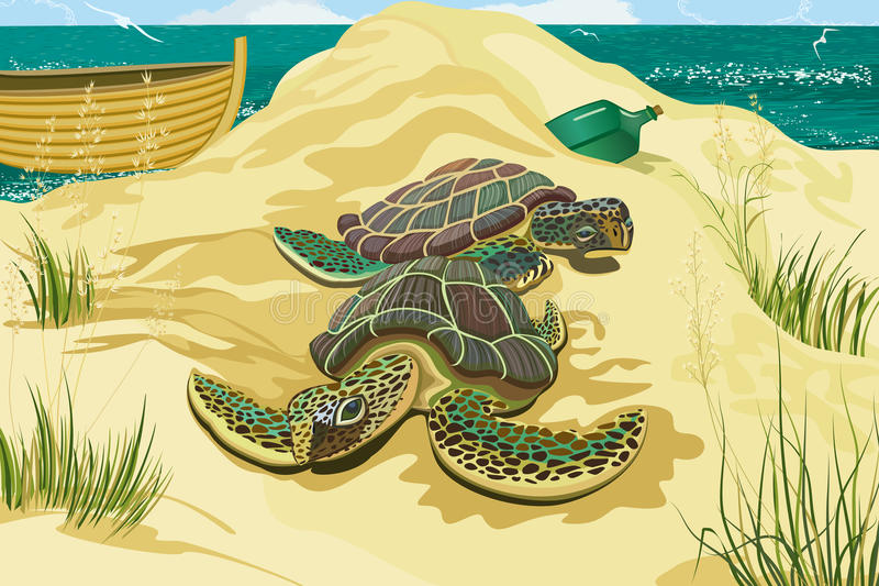 Tortues de mer illustration de vecteur