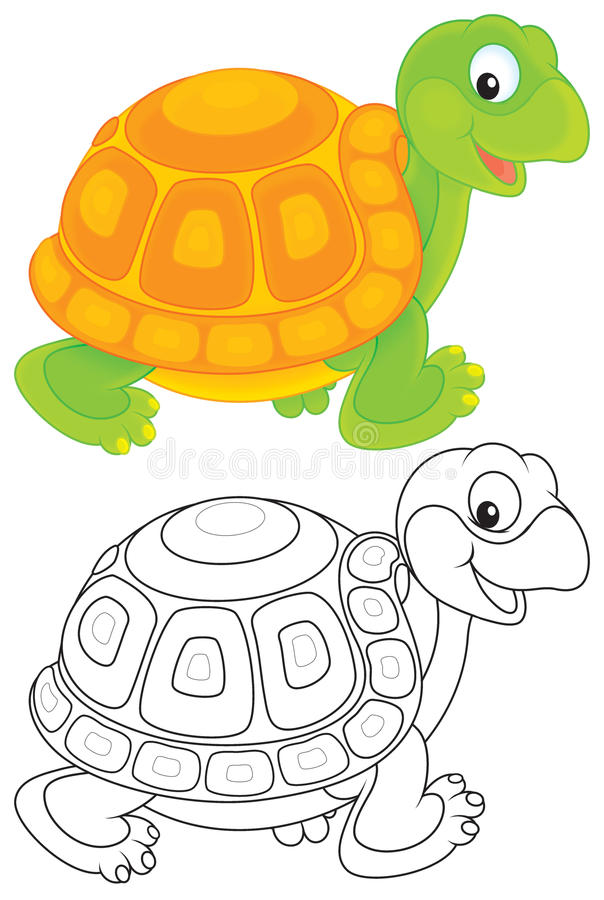 Tortuga libre illustration