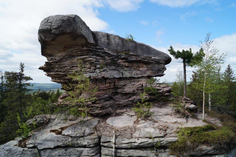 Tortuga de piedra en las montañas de Ural imagenes de archivo