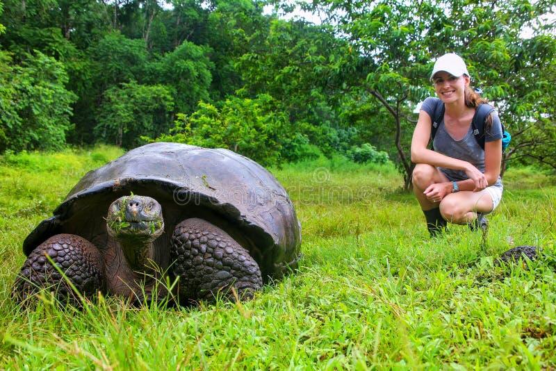 Tortuga gigante de las Islas Galápagos con la mujer joven borrosa en fondo fotos de archivo libres de regalías