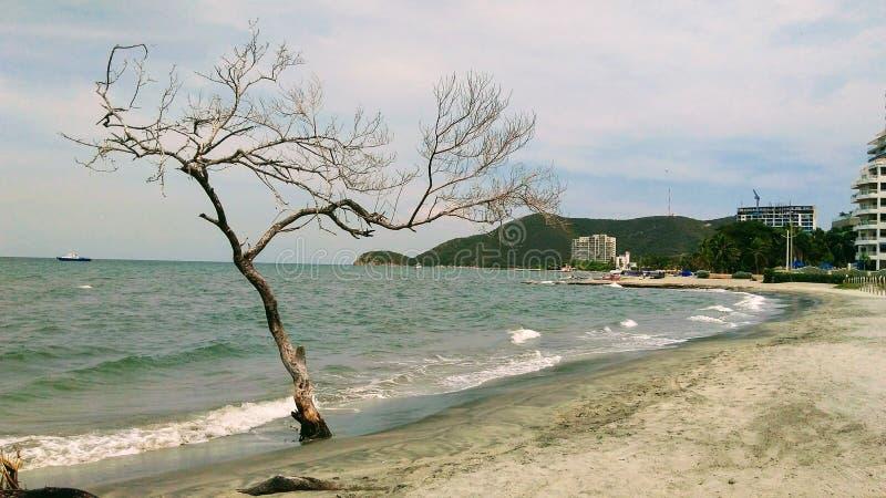 Tortuga udde i Santa Marta arkivbilder