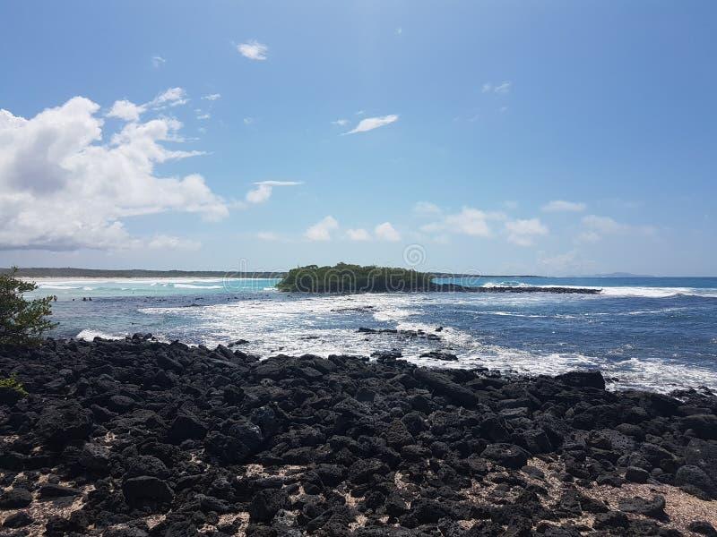 Tortugabaai Santa Cruz Island Galapagos Ecuador royalty-vrije stock foto