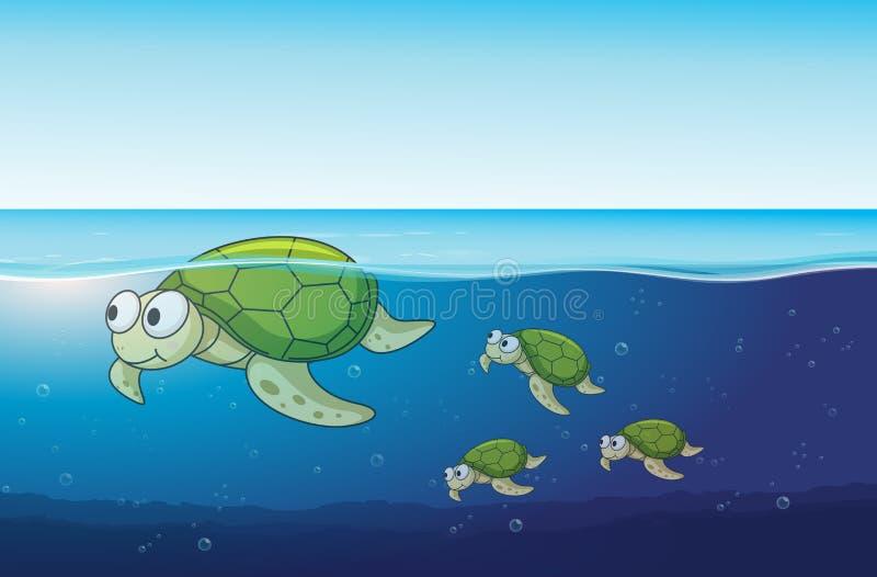 Tortugas de mar que nadan en el océano ilustración del vector