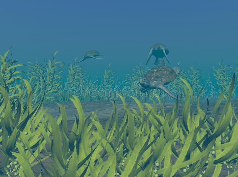 Tortugas de mar verde libre illustration