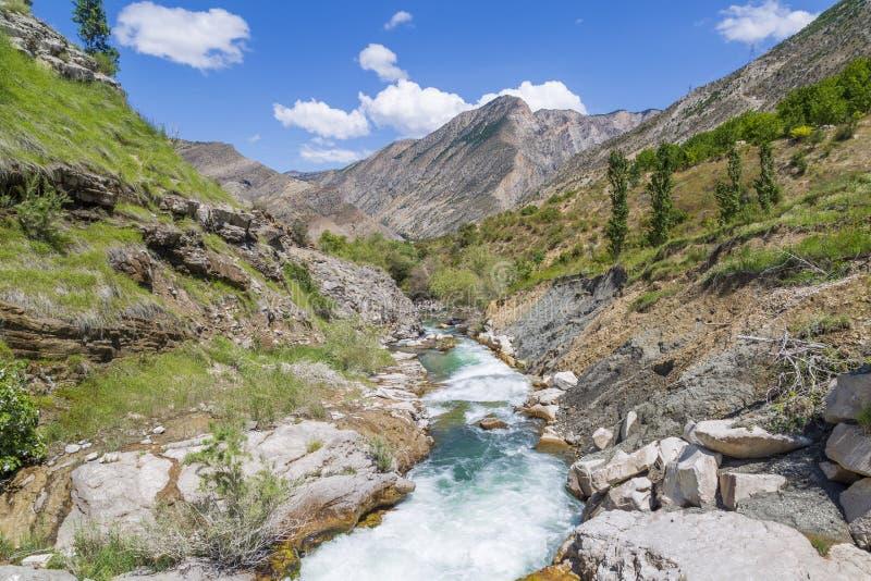 Tortumkreek dichtbij de waterval in Uzundere, Erzurum, Turkije stock foto's