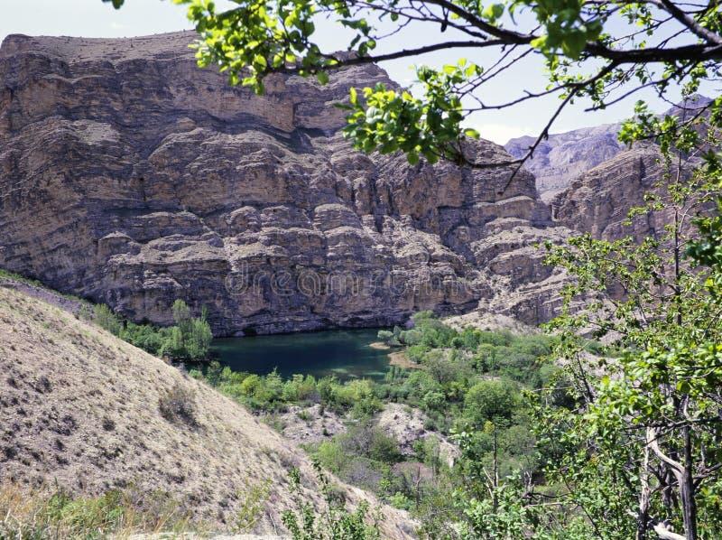 Tortums-Wasserfall nahe einem See stockfotografie