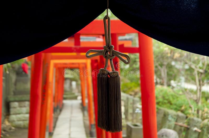 Torus bramy przy sintoizm Nezu świątynią, Tokio, Japonia zdjęcia royalty free