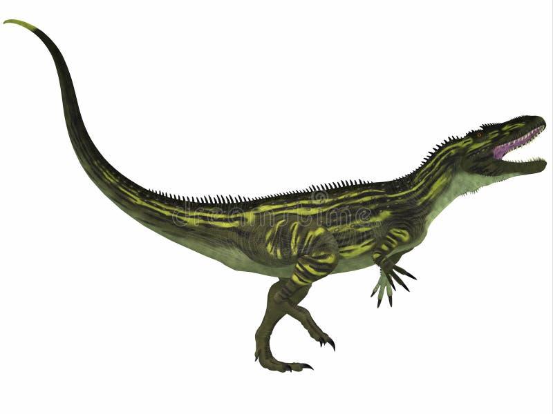 Torvosaurus no branco ilustração royalty free