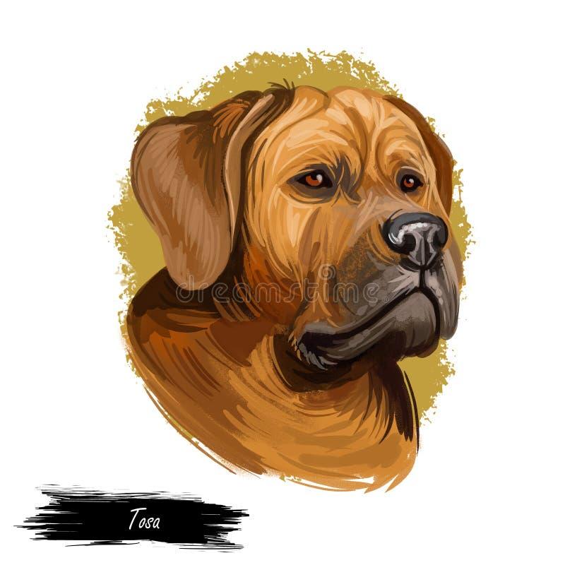 Tosa ou portrait japonais de race de chien de mastiff d'isolement sur le blanc Illustration d'art de Digital, dessin animal d'aqu illustration stock